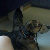 Photo taken at Drake Pet Hospital by Sandi M. on 8/6/2012
