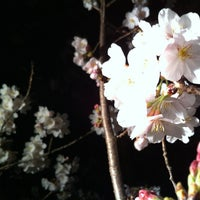Photo taken at 市民の森羽島公園 by Yuuki on 4/9/2012