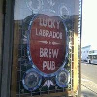Photo taken at Lucky Labrador Brew Pub by Christina R. on 9/11/2011