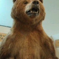 Photo taken at Lindsay Wildlife Museum by Mike O. on 1/22/2012