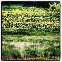 Photo taken at Newfield, NY by Jesse F. on 8/14/2012
