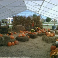 Photo taken at Pumpkin Patch @ The Markets at St Johns Town Center by EastCoast L. on 10/23/2011
