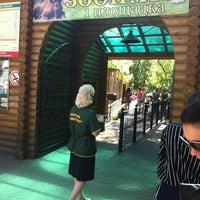 Das Foto wurde bei Зоопарк «Лимпопо» von Ксения Л. am 5/17/2012 aufgenommen