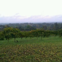 Photo taken at Morris Vineyard and Winery by Sarah L. on 10/11/2011