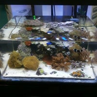 Aquarium Adventure Pet Store In Columbus