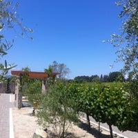 Photo taken at Ceja Vineyards by Javier G. on 5/27/2012