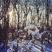 Photo taken at Parc-nature du Bois-de-liesse, Acceuil Pitfield by Manuel M. on 2/26/2012