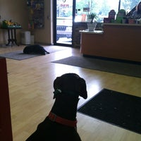 Photo taken at Dog O Mat 2 by Rob Z. on 4/15/2012