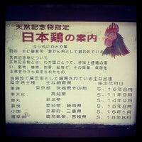 Photo taken at 大津市放牧場 by peneta on 9/2/2012
