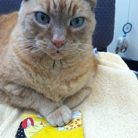 Photo taken at Covedale Pet Hospital by Jennifer B. on 8/9/2011