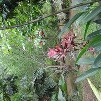 Photo taken at Sg. Congkak Waterfall by Zalina Z. on 10/29/2011