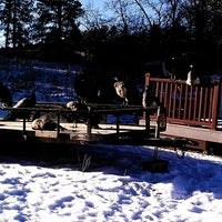 Photo taken at Spirit of the Hills Wildlife Sanctuary by David (Hipster) I. on 12/19/2011