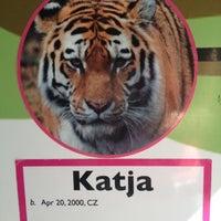 Photo taken at Calgary Zoo by Ekaterina on 8/30/2012