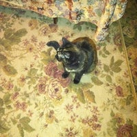 Photo taken at Marmalade Cat Bed And Breakfast by Ronald W. on 10/23/2011