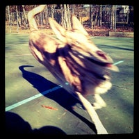 Photo taken at Fallen Skate Park by Brian R. on 1/28/2012