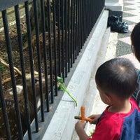 Photo taken at Bogor Palace by Sandi N. on 2/19/2012