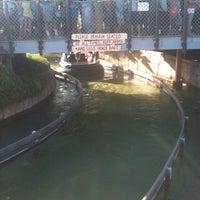 8/9/2012 tarihinde Leslie B.ziyaretçi tarafından Shipwreck Rapids'de çekilen fotoğraf
