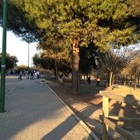 Foto tomada en Parque del Alamillo por Miguel Angel P. el 2/26/2012