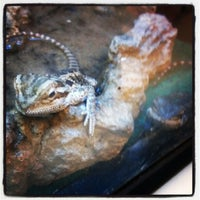 Photo taken at PetSmart by Alison O. on 8/5/2012