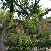 ... Photo Taken At UCR Botanical Gardens By Nathan S. On 5/26/2012 ...