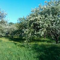 Снимок сделан в Яблоневый сад пользователем ilya l. 5/17/2012