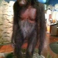 Das Foto wurde bei San Diego Museum of Man von Bradley B. am 1/28/2012 aufgenommen