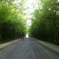 Foto tirada no(a) İTÜ Ağaçlı Yol por Ozan T. em 5/10/2012
