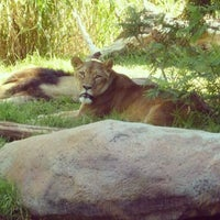 Photo taken at Perth Zoo by Tama L. on 3/18/2012