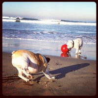 Photo taken at Ocean Beach Dog Beach by Jennifer W. on 10/12/2011