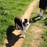 Photo taken at Alston Dog Park by Kaitlin N. on 3/4/2012