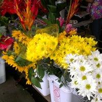 Photo taken at Hilo Farmers Market by Nancy Cook L. on 7/18/2012