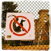 Photo taken at Seymour School Playground by Travis S. on 3/18/2012