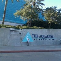 Photo taken at Moody Gardens Aquarium Pyramid by Beth L. on 11/30/2011