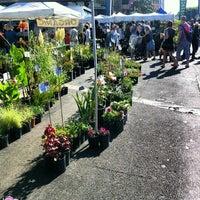 Photo taken at Hollywood Farmer's Market by Jason B. on 9/2/2012