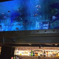 Photo taken at Dive Bar by Gabriel N. on 11/4/2011