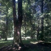 8/1/2012にOcean G.がLaurelhurst Parkで撮った写真