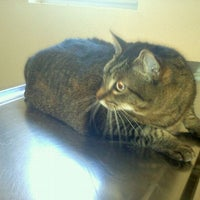 Photo taken at Arroyo Grande Veterinary Hospital by ajdury *. on 2/9/2012