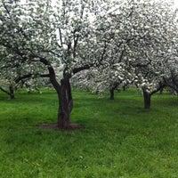 Снимок сделан в Яблоневый сад пользователем Хэлловин Х. 5/13/2012