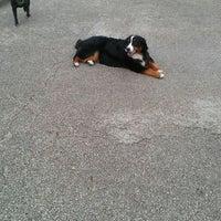 Photo taken at Churchill Field Dog Park by Natalie G. on 4/28/2012