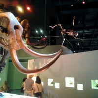 Foto tirada no(a) Houston Museum of Natural Science por John B. em 9/8/2012