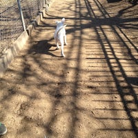 Photo taken at Veterans Grove Dog Run by Mariana B. on 2/27/2012