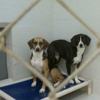 Photo taken at Humane Society Of Catawba County by Jill on 11/12/2011