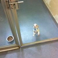 Photo taken at Atlanta Humane Society by Rebecca M. on 3/10/2012