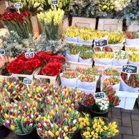 Photo taken at Flower Market by Sasha on 1/8/2012