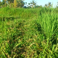 Photo taken at Galengan Tengah Sawah by Dhee Y. on 8/31/2012