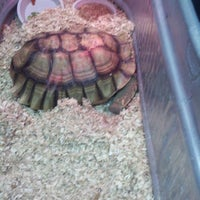 Photo taken at Uncle Bill's Pet Centers Greenwood by Brandon H. on 4/22/2012