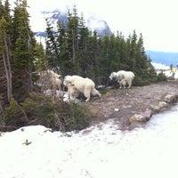 Photo taken at Glacier National Park - West Entrance by Eliseo G. on 7/3/2012