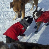Photo taken at University lake dog park by Christie R. on 3/18/2012