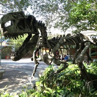 Photo taken at Zoo Miami by Brian B. on 3/3/2012
