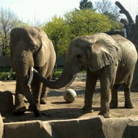 Photo taken at Milwaukee County Zoo by Kelly M. on 3/26/2012